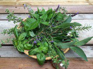 Yoni Steaming - fresh herbs 2 -small
